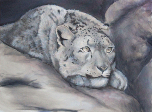 Snow Leopard, Oils, 18x24, 2007.