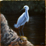 Snowy Egret, Oil on Stone, 2013.