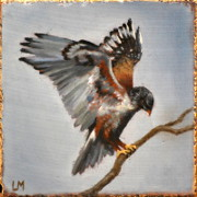 Redtail Hawk, Oil on Stone, 2013.