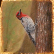 Sapsucker, Oil on Stone, 2013.