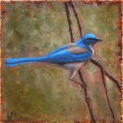 Scrub Jay, Oil on Stone, 2013.
